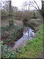 SX9490 : The Northbrook and footpath, Ludwell Valley Park, Exeter by David Smith