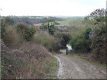 TQ2912 : South Downs Way near Pyecombe by Malc McDonald