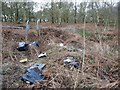 SE4208 : Flytipping at Houghton Common by Christine Johnstone