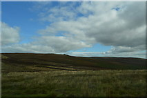 SX6781 : View from the B3212 by N Chadwick
