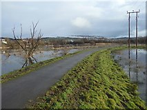 NS3977 : Cycle path crossing flooded field by Lairich Rig