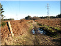TG4500 : The East Suffolk railway once crossed here by Evelyn Simak