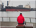 J3575 : One red shipspotter, Belfast by Rossographer