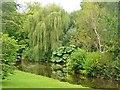 SU0425 : Broad Chalke - River Ebble by Colin Smith