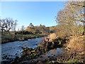 NZ0954 : Banks of the River Derwent by Robert Graham