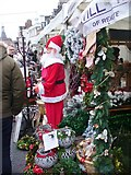 TQ2550 : Reigate - Christmas Market by Colin Smith