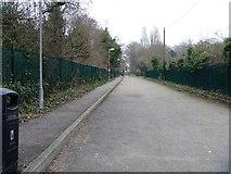 TQ1977 : Alongside the railway [2] by Michael Dibb