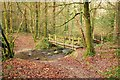 SX0069 : Footpath in Hustyn Wood by Derek Harper