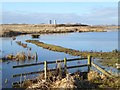 NZ4922 : A corner of Haverton Hole Pools by Oliver Dixon