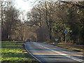 TQ4251 : Kent Hatch Road, Limpsfield Chart by Malc McDonald