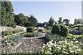 SU5927 : Vegetable Garden at Hinton by Bill Nicholls
