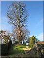 NZ6808 : The Rookery, Castle Hill by Matthew Hatton
