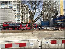 TQ3179 : London Plane tree, Elephant and Castle remodelling, Newington, south London by Robin Stott