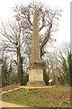 SP0201 : Cirencester Obelisk by Richard Croft
