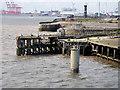 SJ3390 : Princes Jetty, Liverpool Docks by David Dixon