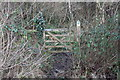 ST2097 : Gate, Ebbw Valley Walk, Newbridge by M J Roscoe