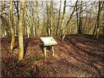 SU8789 : Warren Wood Earthwork, Visitor Board by Des Blenkinsopp