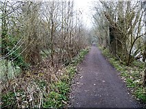 TQ1776 : Thames Path [7] by Michael Dibb