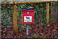 SP0775 : Dog waste bin, Middle Lane, Wythall, Worcs by P L Chadwick