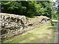 TL1306 : Verulamium - City Wall Remains by Colin Smith