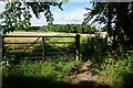 ST8066 : Footpath to Kingsdown by Bill Boaden