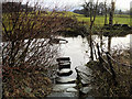 NY3605 : River Rothay, Stepping Stones by David Dixon