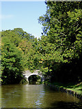 SJ6641 : Spinks Bridge south of Audlem in Cheshire by Roger  Kidd