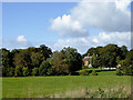 SJ6640 : Pasture and woodland north of Adderley, Shropshire by Roger  Kidd
