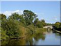 SJ7327 : Canal south of Soudley in Shropshire by Roger  Kidd