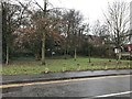 SJ8546 : Newcastle-under-Lyme: permissive recreational area off The Avenue, Basford by Jonathan Hutchins