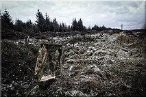 SE8791 : Prehistoric earthworks by Mick Garratt
