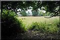 ST7762 : Field on Claverton Down by Bill Boaden