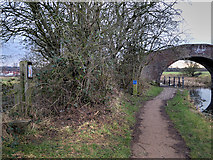 SD7908 : Manchester, Bolton and Bury Canal Towpath at Rothwell Bridge by David Dixon