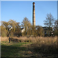 TL4659 : Logan's Meadow and the pumping station chimney by John Sutton