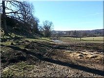 NS7692 : Farm track by Callum Black