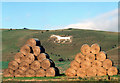 SU1062 : Bales and White Horse by Des Blenkinsopp