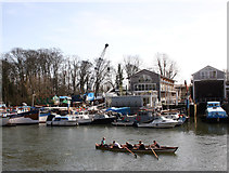 TQ1673 : Rowing past Eel Pie Island by Des Blenkinsopp