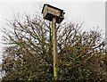 ST3537 : Nesting Box, beside King's Sedgemoor Drain by Roger Cornfoot