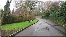 SP0683 : Access Road by Birmingham Wildlife Conservation Park by Paul Collins