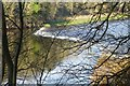 NT8744 : Weir on the River Tweed by Russel Wills