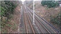 SJ8195 : Metrolink tramline north of Firswood station by David Martin