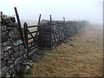 NY1212 : Gate in the endless wall by David Brown