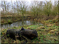 TA1151 : Pond near North Frodingham by Paul Harrop
