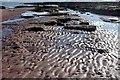 SX8962 : Ripples and rocks, Hollicombe by Derek Harper