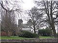 NT1685 : Cockairnie, by Otterston Loch by M J Richardson