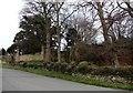 NZ0953 : Old garden walls by Robert Graham