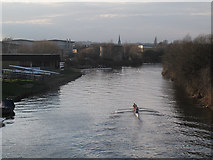 SE3231 : Rowers on the Aire & Calder Navigation by Stephen Craven