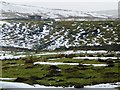 NY8712 : Lineside hut, Stainmore Line [at Black Riggs] by Christine Johnstone