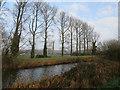 TL6098 : River Wissey by Hugh Venables