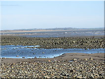 J3831 : The Shimna Estuary at Low Tide by Eric Jones